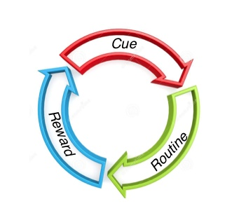 Habit cycle